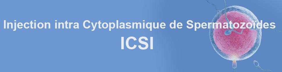 ICSI-tunisie-fr-4